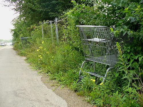 Alley cart