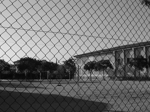 Miratges de somnis empresonats