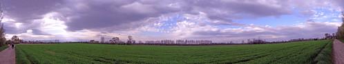 http://farm2.static.flickr.com/1054/919589873_cfcb4284b3.jpg