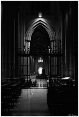 Washington National Cathedral (Magda'70) Tags: bw usa america washingtondc us washington nikon cathedral area dcmetro 2007 washingtonnationalcathedral washingtondcmetroarea zymon artinbw