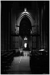 Washington National Cathedral (Magda'70) Tags: bw usa america washingtondc us washington nikon cathedral area dcmetro 2007 washingtonnationalcathedral washingtondcmetroarea zymon artinbw