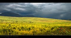 Los Royos III (muliterno) Tags: murcia campos losroyos