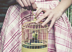 (yyellowbird) Tags: bird birdcage girl hands courtney skirt plaid anastasiachatzka