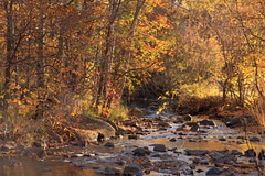 McVicar Creek (KarenR-TB) Tags: autumn ontario fall leaves leaf thunderbay mcvicarcreek