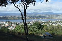 NZ 091