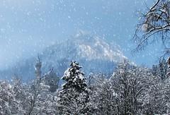 OH.............. How I miss WINTER!!! (klg1309) Tags: winter fab snow castle germany bavaria cannon neuschwanstein s3 soe naturesfinest abigfave anawesomeshot impressedbeauty ultimateshot superbmasterpiece diamondclassphotographer