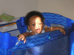 Dayo @ Eight Months (sungoddess♫) Tags: baby popo eightmonths dayo