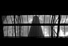 the glass ceiling (muftysludge) Tags: portrait blackandwhite stilllife london landscape documentary lookingup bricklane truman tatebritain howwearenow
