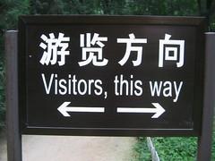 este camino