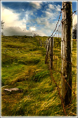 The Fence (Glenbourne At Home) Tags: ireland colour fence landscape bravo searchthebest soe dinglepeninsula themoulinrouge conorpass cokerry blueribbonwinner splendiferous supershot magicdonkey mywinners shieldofexcellence platinumphoto superbmasterpiece goldenphotographer diamondclassphotographer superhearts excellentphotographerawards naturewatcher excapture proudshopper theperfectphotographer wildandwindy