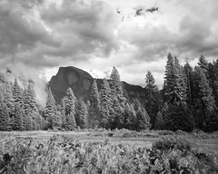 Valley Landscape with Half Dome (B&W)