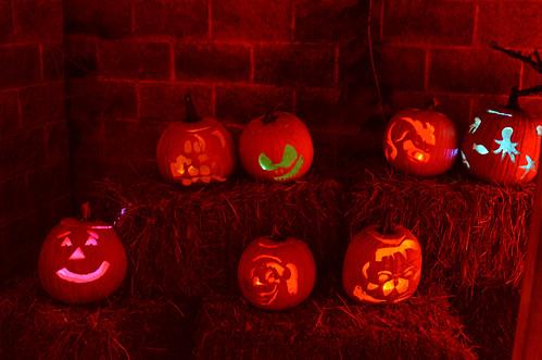 halloween-boozoo-10