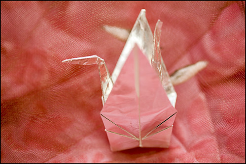 the paper crane project