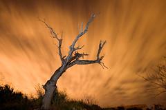 el tridente(nocturna) (natalia martinez) Tags: myfavorites canoneos350d nightaerialphotography nataliamartinez fiveflickrfavs ostrellina