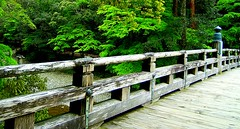 Isuzu River (gingerreiki) Tags: fab japan   naturesfinest isejingu isuzuriver  diamondclassphotographer excellentphotographerawards  theperfectphotographer