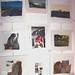 "Emma McCanns exhibition "" My Libya"""
