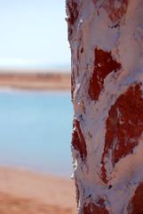 Derriere le mur (toutchocolat) Tags: club el gouna med egypte