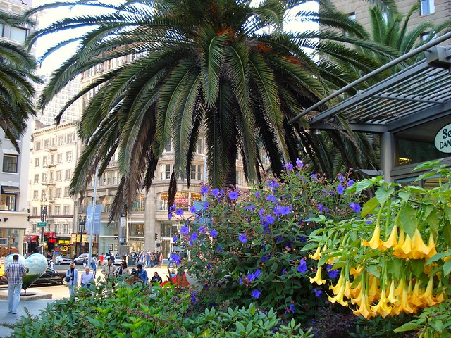 Union Square Shopping, Dining & Travel Guide :: San Francisco Shopping