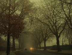 bowfell rd urmston manchester (plot19) Tags: road uk trees winter england cold car misty manchester lights nikon moody northwest sale explore trafford urmston stretford flixton davyhulme colorphotoaward theunforgettablepictures