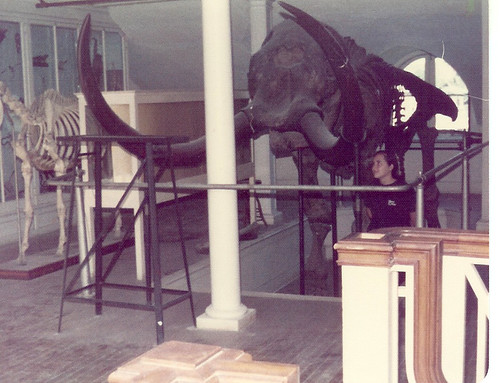 The Mastodon in New England Building.