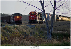CP & DMVW (Robert W. Thomson) Tags: railroad max train diesel railway trains northdakota locomotive canadianpacific trainengine bandit sooline cp soo geep milw emd gp382 gp38 gp402 milwaukeeroad gp40 fouraxle dmvw dakotamissourivalleywestern gp402lw