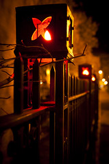 Halloween Lights in Iron Fence
