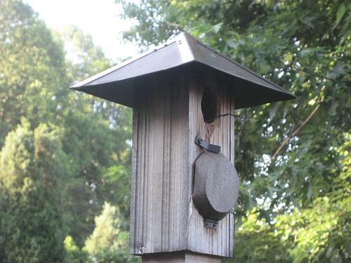 Birdhouse Exit