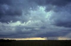 rain, Everglades