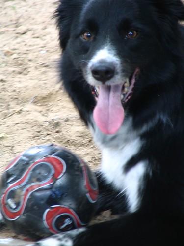 Tia's Soccer Ball