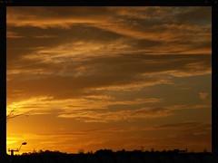 Golden sunset (Zelda Wynn) Tags: sunset sky weather clouds golden auckland waitakere newlynn zeldawynnphotography