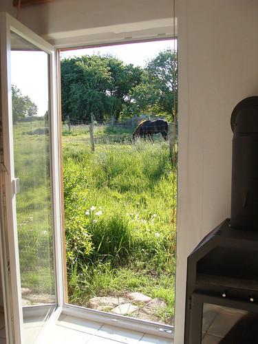 Blick aus dem Ferienhaus - Ausgang zur Pferdekoppel