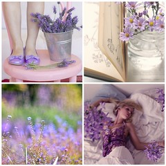 TILT - purple wishes (sma_kee) Tags: flowers feet girl beauty field collage vintage book bed shoes purple legs bokeh mosaic girly violet lavender sheets pastels romantic dreamy tilt wakingup thingsilovethursdays purplewishes abucketoflavender