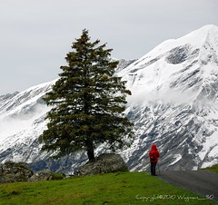 Little Red Hiking Hood (Fabio Montalto) Tags: alps switzerland kandersteg littleredhood nikond200 colorefexpro nikfilters capturenx2 wagman30 platinumpeaceaward bestcapturesaoi