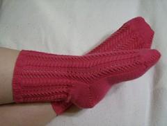 Pembrokeshire Pathways socks