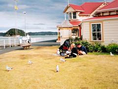 PAIHIA, NEW ZEALAND (Andr Pipa) Tags: family newzealand grass familia clouds natureza cu bayofislands northland golfo paraso darksky novazelndia ilhas tempestade paihia relvado streetcandid ilhotas ilhadonorte andrpipa baadasilhas sortm photobyandrpipa