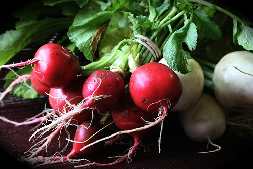 Radishes and Turnips - Redfire Farm CSA