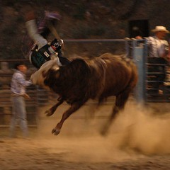 Oh my Gawd! (cherokee saw) Tags: horses colorado rodeo dumont ohmygawd