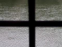 Come un risicoltore in una risaia capovolta, te ne stai tra steli di pioggia che si automietono - by Add rien