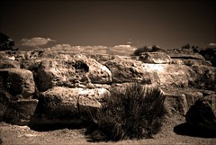 {} (ScarletFaerie (K. Wood Photography)) Tags: light arizona sky plants nature rock sepia clouds lost desert dream takeabow fauxvintage naturesfinest dreamjournal piratetreasure diamondclassphotographer flickrdiamond piratetreasure2 piratetreasure3