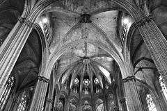 Barcelona Cathedral (Piaseno) Tags: barcelona blackandwhite bw house 20d canon spain worship cathedral gothic bcn kathedrale catedral espana catalunya spanien gotik katalonien gtico houseofworship superbmasterpiece