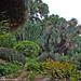 Dentro il giardino-In The Garden