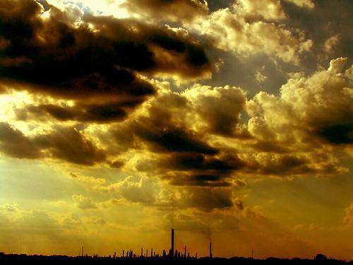 Shafts Of Light. Alone But Shafts Of Light