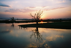 Amarapura Sunset (Wusty101) Tags: sunset oneofakind burma myanmar amarapura wetreflections splendiferous supershot beautifulcapture abigfave beautyfullifephotography ljomi thebestofflickr theexploremachine everywherewalksbest