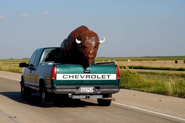 85mph Buffalo