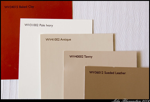 ivory walls paint color, gray Image