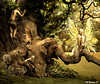 Once upon a time (moonmomma1) Tags: tree art photomanipulation photoshop artist artistic digitalart photoshoproyalty
