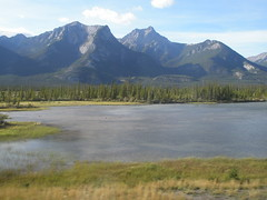Another view of Jasper National Park (jimbob_malone) Tags: alberta 2007 highway16 greyhoundbus