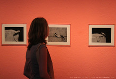 documenta 12 | Alina Szapocznikow / Fotorzezba | 1971 | Neue Galerie