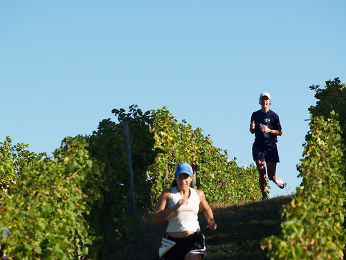Harvest Stompede Vineyard Run