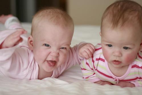Babies 1/365